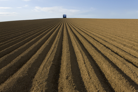 Freshly tilled soil in farm field with tractor ploughing with blue sky Banco de Imagens