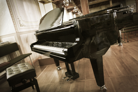 Grand Piano in the Hall