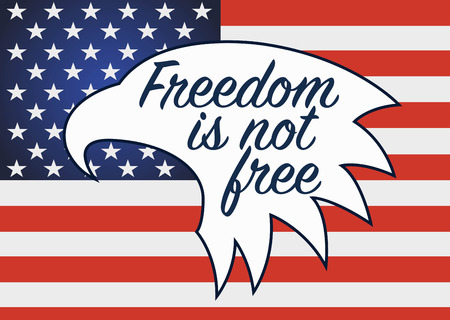 remembrance day poppy: Freedom is not free. Veterans day in usa.