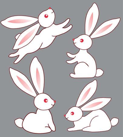 Vier weiße niedliche Hasen für Ihr design Standard-Bild - 9692282