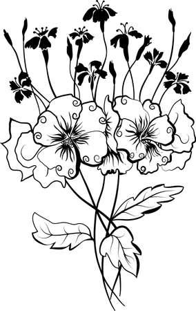 claveles: Ilustraci�n vectorial viola y bouquet para el dise�o