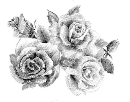 hand drawn flower: Flower sketch  bouquethand drawing Stock Photo