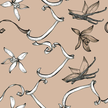 vanilla flower: Flower vanilla sketch  seamless pattern hand drawing