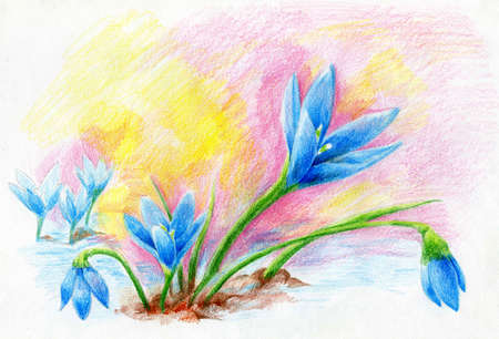 etched: Snowdrop bouquet flower sketch. Chalk and color pencil technique