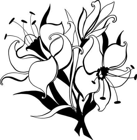 Flower lily sketch bouquet hand drawing for design