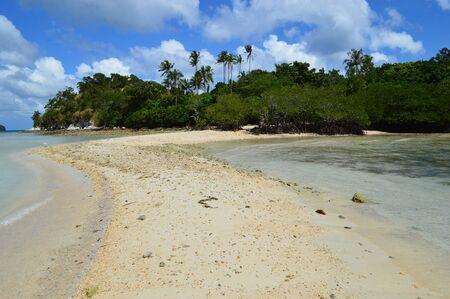 nido: Snake island in El Nido