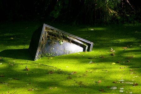 Tv set/monitor half-submerged in a disused canal