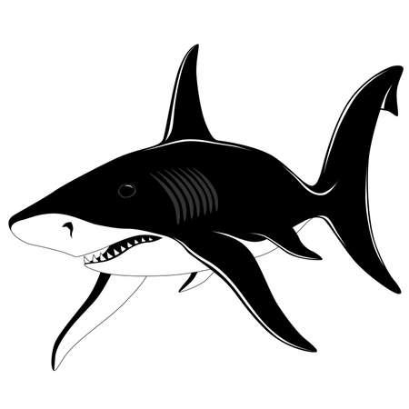 Shark, tattoo Stock Vector - 6463042