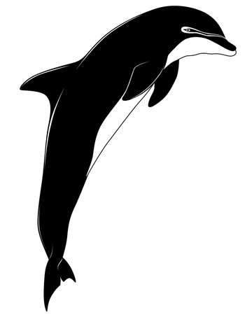 Dolphin, tattoo Vector