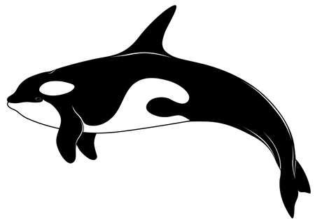 Killer whale, tattoo Stock Vector - 6759073