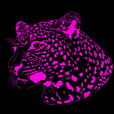 The abstract image of a leopard Vector
