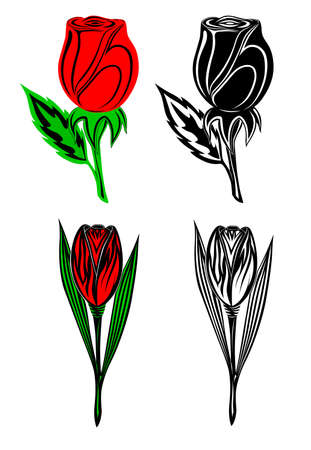 Set from four flowers Vector