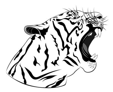 Tiger, tattoo Vector