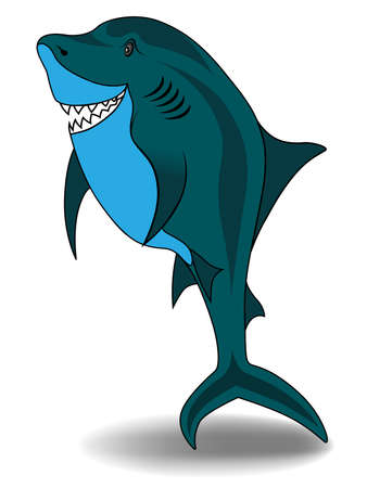 Shark vector illustration isolated on white background Vector