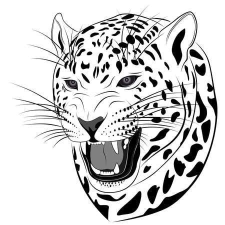 Leopard executed in the form of a tattoo Stock Vector - 7785474
