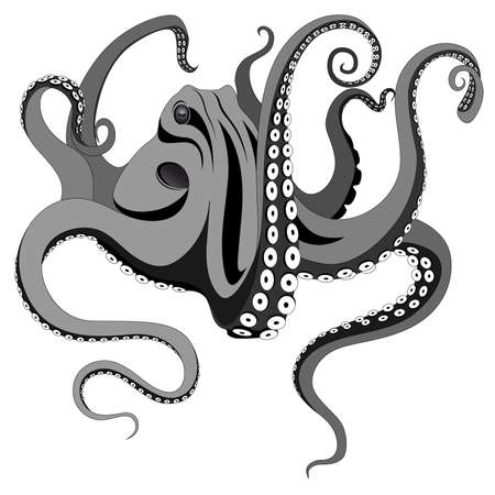 tentacle: Octopus represented in the form of a tattoo.