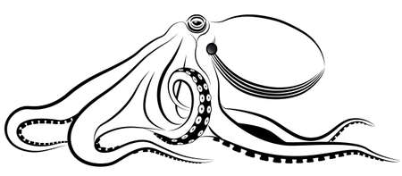 black octopus: octopus represented in the form of a tattoo.