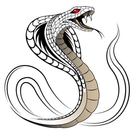 venomous snake: Vector Snake, Cobra Illustration