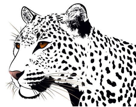 Leopard, tattoo Vector