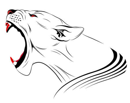 female lion: Vector lioness represented in the form of a tattoo Illustration