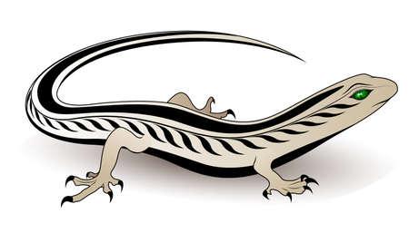 Lizard vector Vector