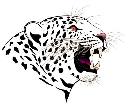 dexterous: Vector leopard executed in the form of a tattoo