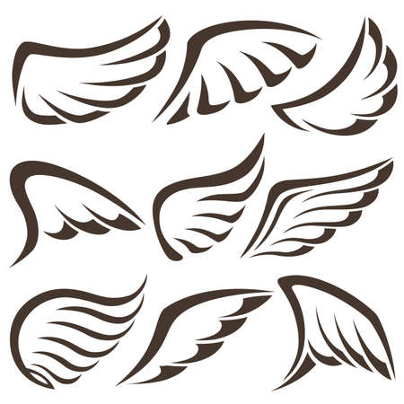 Wings. Set of design elements. Vector illustration Vector