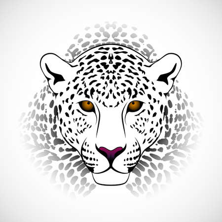 dangerous lion: Vector leopard