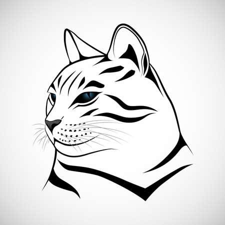 beautiful cat: Vector cat