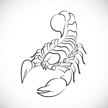 sign of zodiac: Abstract scorpion