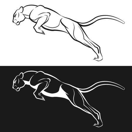 Imagen blanco y negro de un puma