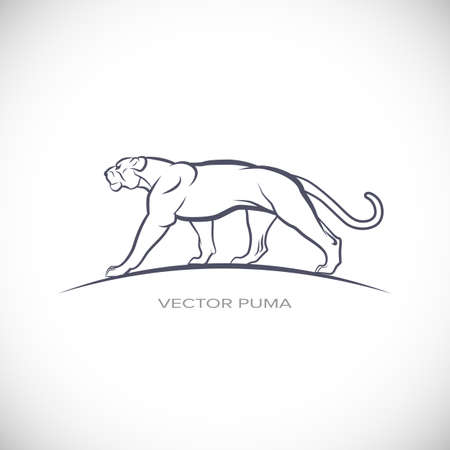 puma: Vector Label with puma