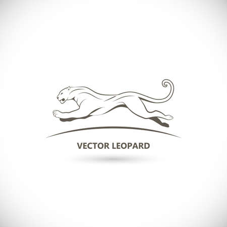 Vector label with a picture of leopard