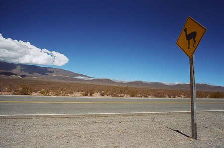 traffic signal: L'am�nagement paysager et de feux de circulation de flamme, Salta, Argentine