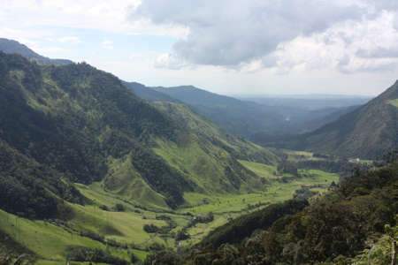 andes mountain: Cocora Valley, one of the most beautiful landscape of Quindio, which is nestled between the mountains of the Cordillera Central in Colombia. Predominates in the majestic surroundings of Quindio wax palm, Colombias national tree growing to 60 meters. Coco