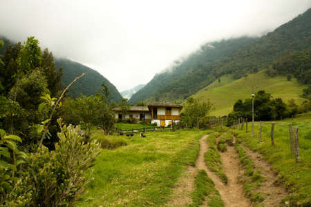Cocora Valley, one of the most beautiful landscape of Quindio