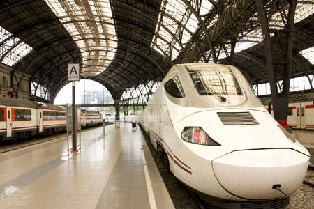 riel: Alvia train in France station, Barcelona, Spain  BARCELONA, JUN 23: The Alvia, also called AVE in France Station, in Barcelona, on Jun 23, 2009. High-speed train, the railway company RENFE, in France Station, in Barcelona, Spain. On the sides, commuter tr