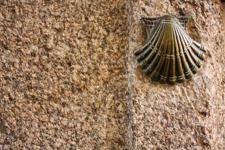camino de santiago: Symbol of the pilgrims. Santiago de Compostela. Camino de Santiago. Year of St James.
