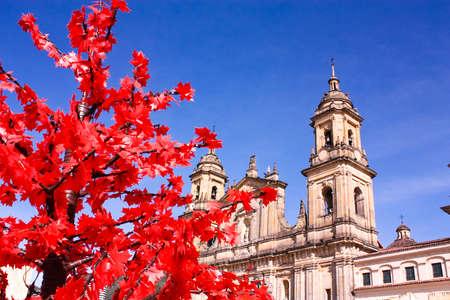 "Kathedraal van Bogota. ""Catedral Metropolitana Basiiica de la Inmaculada Concepción"". Op de Bolivar plein. La Candelaria wijk, Bogota, Colombia. Stockfoto"