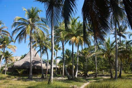 Playa Blanca on the island of Baru. Cartagena de Indias. Colombia