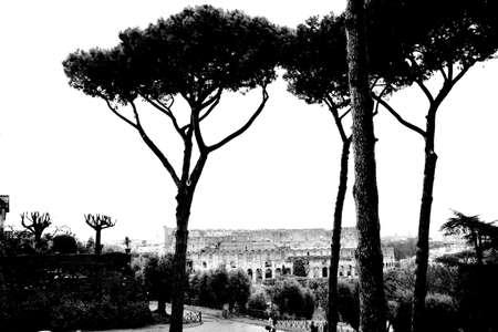 amphitheatre: The Colosseum or Coliseum from Forum. Rome. Monochrome photography.