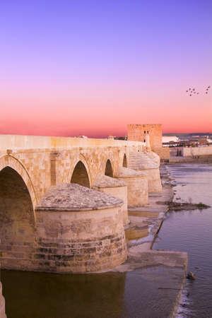 Roman bridge and fortress of the Calahorra Tower  Cordoba, Andalusia, Spain photo