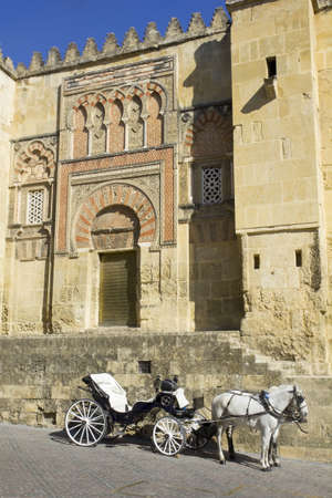 andalusian: Horse carriage parked next to the mosque of Cordoba  Andalusia, Spain