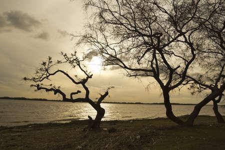 uruguay: Landscape of Rio de la Plata, the natural border between Argentina and Uruguay The Río de la Plata  River of Silver, or usually rendered River Plate  Stock Photo