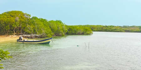 comprising: Boat in a mangrove forest  The Rosario and San Bernardo Corals National Natural Park The Rosario Islands are an archipelago comprising 27 islands lto 2 hours by boat from Cartagena de Indias, in the Caribbean sea, Colombia