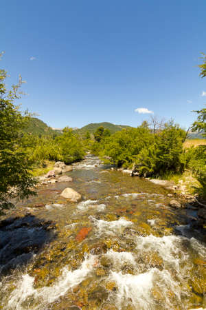 Small stream in Nalcas National Park, Chile photo