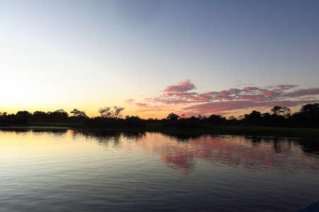 dawning: Sunrise in the jungle. Yacuma Natural Park Bolivia.