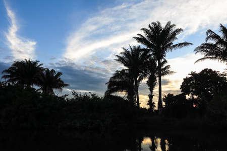 dawning: Yacuma river. Boat Crossing the Amazon.  Beni region Pampas de Yacuma Bolivia. Stock Photo