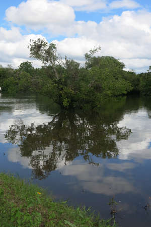 dawning: Yacuma river. Bolivian jungle. Amazon region Stock Photo