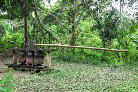 tropics: Old trapiche to squeeze sugarcane. Bolivian tropics. Beni department.